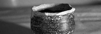 Descobriment i excavació de sitjes de l'Edat de Ferro al barri de San Pedro Regalado, Valladolid (1957-1965)